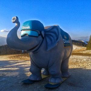 Слон Dilmah